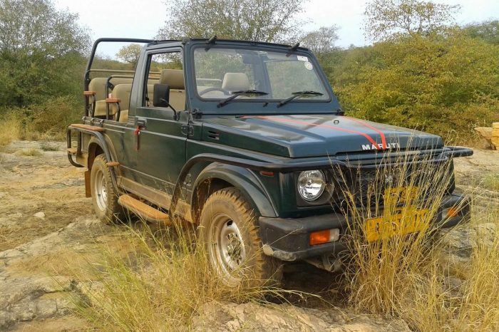 Ranthambore Safari by Shared Jeep
